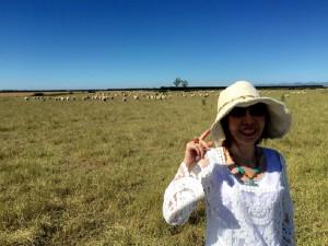 ニュージーランドの羊ちゃん!
